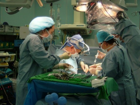 liver-transplantation-for-cancer-main