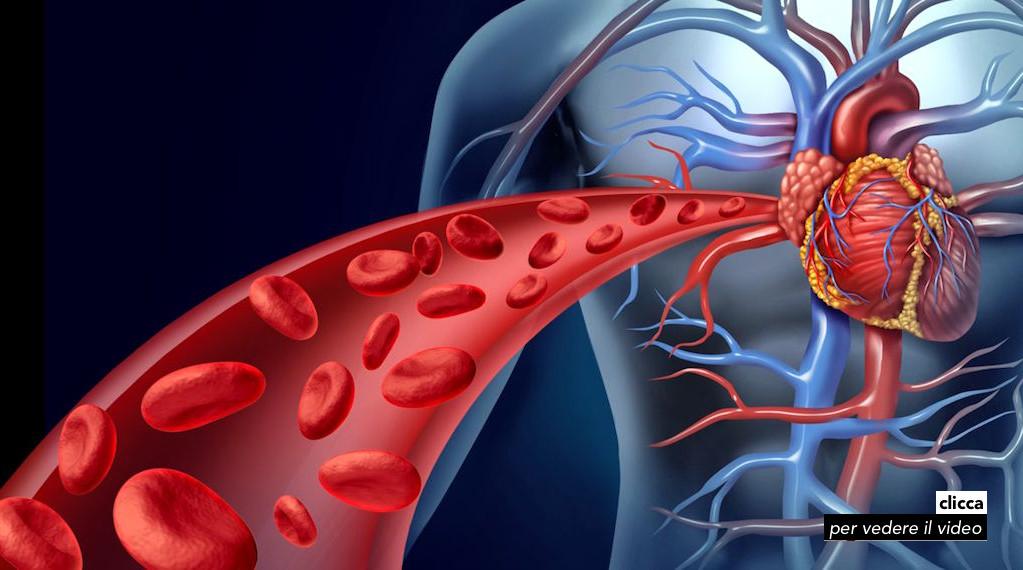 3-colesterolo 10giu16