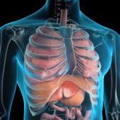 Colangite biliare poco conosciuta
