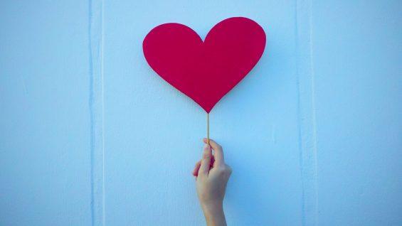 11:05:21patologie cardiovascolari